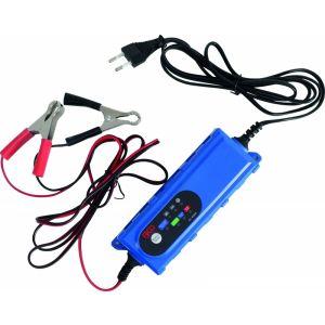 Chargeur de batterie 6V et 12V