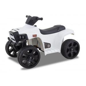 Panda mini quad pour enfant